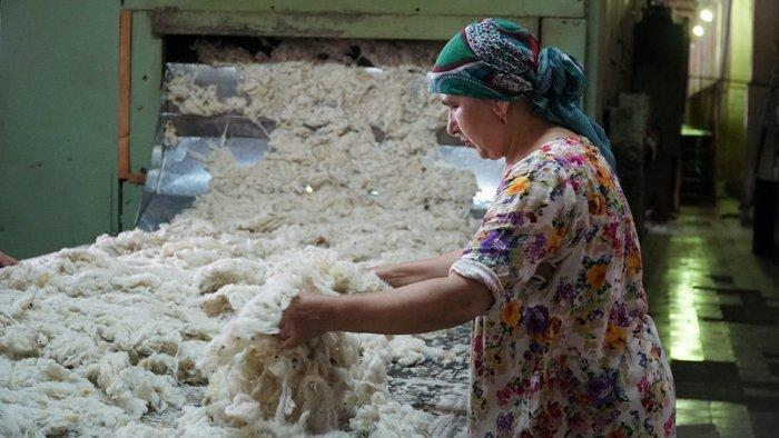 Шерсть овец основной материал для войлока