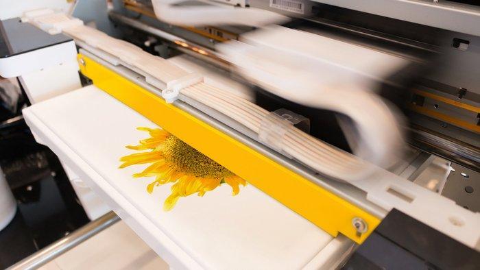 Печать на ткань наноситься машинным способом