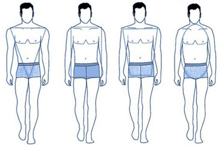 Основные четыре типа мужских фигур