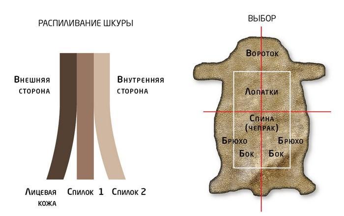 Разделение шкуры на слои