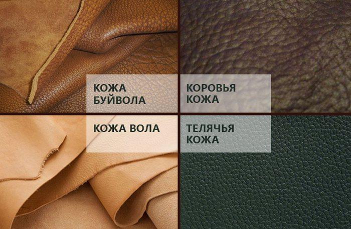 Виды натуральной кожи фото