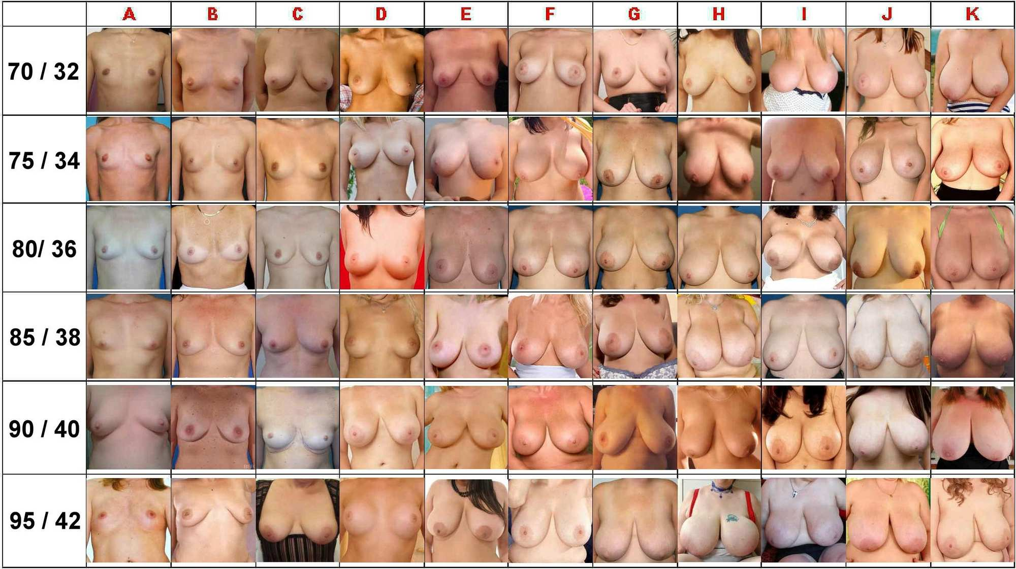 Формы груди могут быть разного вида, фото