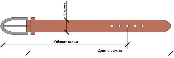 Размеры ремня, фото